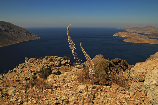 Rock Climbing – Kalymnos – Greece