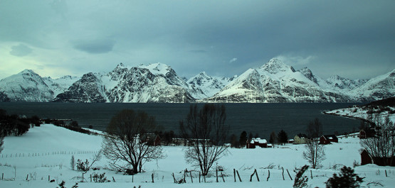 Explore North of Norway – Sail & Ski!